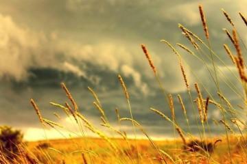 Sifat Surga dan Penghuninya